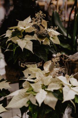 Claudias-Blumenzauber-Advent-Weihnachten-Florist-Tirol-50